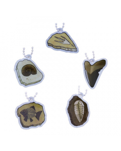 EarthCache™ Fossil Tag Set - All 5 Tags